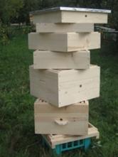 Ульи 12 рамочные, ульи 16 рамочные, ящики для пчелопакетов.